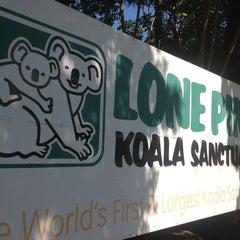 Photo taken at Lone Pine Koala Sanctuary by João Luiz G. on 8/20/2012