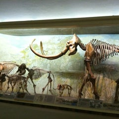 Photo taken at Morrill Hall by Elizabeth M. on 7/19/2012