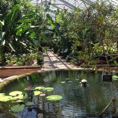 Photo taken at Matthaei Botanical Gardens by Matt F. on 6/17/2013