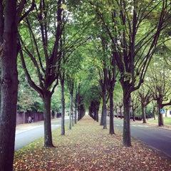 Photo taken at Begraafplaats van Brussel / Cimetière de Bruxelles by Christelle L. on 9/29/2013