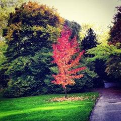 Photo taken at Belvoirpark by Breno V. on 10/21/2012