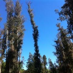 Photo taken at Cerro San Juan by Ariel R. on 11/11/2012