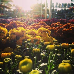 Photo taken at The Home Depot by Bailey H. on 8/23/2015