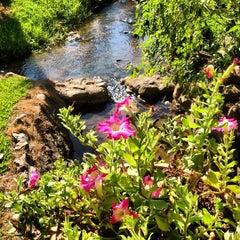 Photo taken at Krisdadoi Resort Chiang Mai by Pomme V. on 5/25/2013