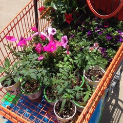 Photo taken at The Home Depot by Tracey S. on 5/31/2014