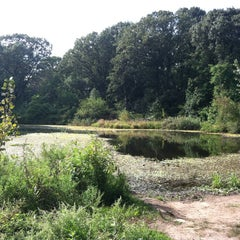 Photo taken at Forest Park by Oscar T. on 9/16/2012