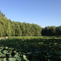 Photo taken at 沈阳师范大学南区食堂 by Daria S. on 9/11/2013