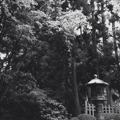 Photo taken at Japanese Tea Garden by Melinda A. on 7/12/2013