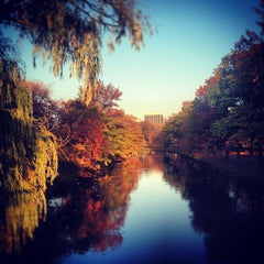 Photo taken at Charles River by Lilly L. on 11/4/2012