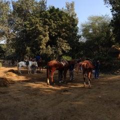 Photo taken at Delhi Riding Club by Hiroshi O. on 12/9/2012