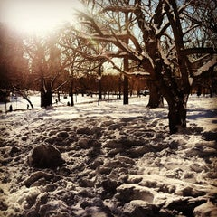 Photo taken at Boston Common by Keith L. on 2/12/2013
