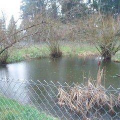 Photo taken at French Lake Off-Leash Dog Park by Shelli M. on 1/20/2013