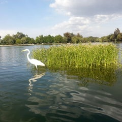 Photo taken at Laguna de San Baltazar by Elizabeth C. on 6/18/2013
