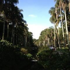 Photo taken at Jardim Botânico de São Paulo by Tommy P. on 5/4/2013