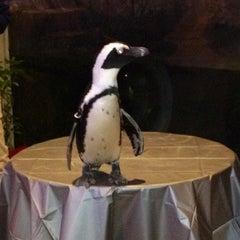 Photo taken at National Aviary by Shana C. on 12/6/2012