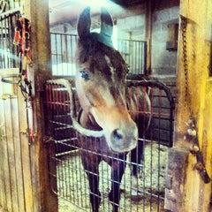 Photo taken at Rock Creek Horse Center by Olivia U. on 9/7/2013
