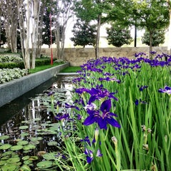 Photo taken at Nasher Sculpture Center by Gus R. on 4/13/2013
