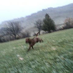 Photo taken at Quarry View Park by Ryan R. on 12/20/2015