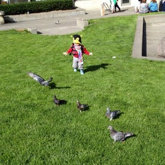 Photo taken at Victor Steinbrueck Park by Buster B. on 9/29/2012