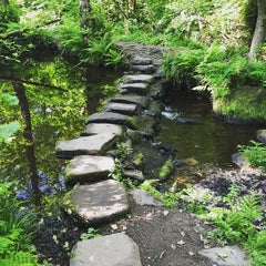 Photo taken at Rivelin Valley by James L. on 6/11/2015