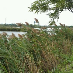 Photo taken at New Jersey Meadowlands Commission by Kimberly P. on 9/22/2011