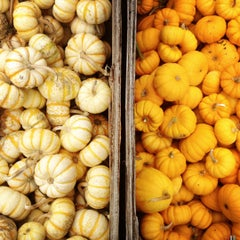 Photo taken at Kruger's Farm Market by Josh C. on 10/14/2012