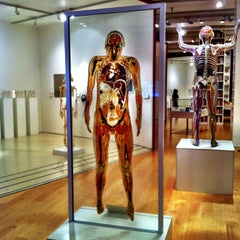 Photo taken at Wellcome Collection by Rafael M. on 2/14/2013