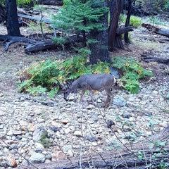 Photo taken at Lower Yosemite Falls by Heather on 9/7/2015