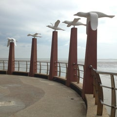 Photo taken at Pantai Morib by Anelin C. on 2/16/2013