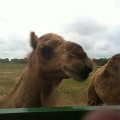 Photo taken at Sharkarosa Wildlife Ranch by Sean D. on 9/16/2012