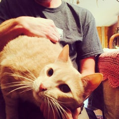 Photo taken at Marmalade Cat Bed And Breakfast by Elle C. on 6/29/2015