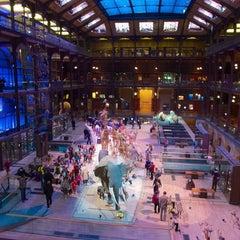 Photo taken at Grande Galerie de l'Évolution by MikaelDorian on 5/27/2014