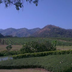 Photo taken at PB Valley Khao Yai Winery by Maesar S. on 1/20/2013