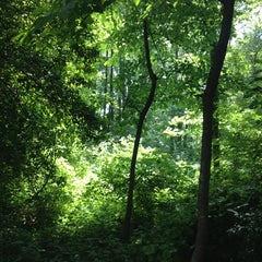 Photo taken at McLean Central Park by Katie F. on 6/2/2014