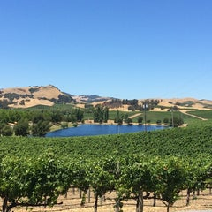 Photo taken at Cuvaison Estate Wines by John N. on 6/29/2014