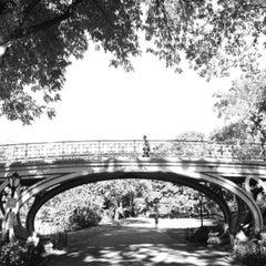 Photo taken at Central Park - Gothic Bridge by Fabian L. on 9/28/2013