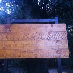 Photo taken at Riserva naturale Tor Caldara by Paola B. on 12/29/2012