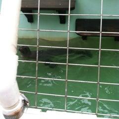 Photo taken at Morro Bay Aquarium by Water P. on 7/13/2013