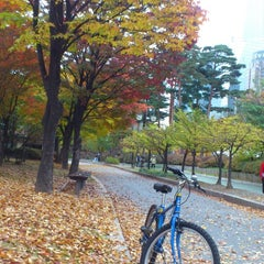 Photo taken at 여의도공원 문화의 마당 (Yeouido Park Culture Square) by PIMpim on 10/31/2014