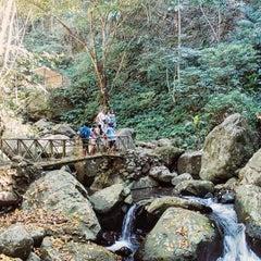 Photo taken at Mambucal Mountain Resort by John G. on 2/9/2016