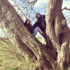 Photo taken at The Dark Hedges by Georgina A. on 4/16/2015