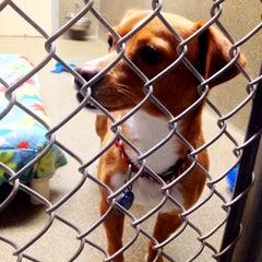 Photo taken at Animal Welfare League Of Arlington by Ronald B. on 12/26/2014