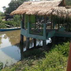 Photo taken at Wisata Anyar Mangrove (WAM) by Raihan A. on 9/29/2012