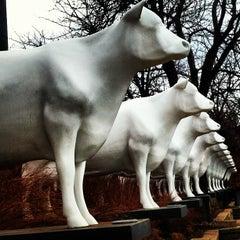 Photo taken at Kopp's Frozen Custard by Lissa E. on 10/19/2012