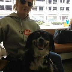 Photo taken at Marina Pet Hospital by Ray C. on 8/11/2013