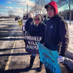 Photo taken at Marineland by Michael on 1/1/2013