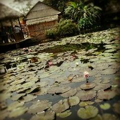 Photo taken at Parque de las Leyendas by Diego X. on 9/23/2012