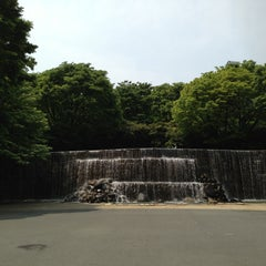 Photo taken at 新宿中央公園 (Shinjuku Central Park) by Mihhail S. on 4/29/2013