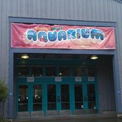 Photo taken at Oregon Coast Aquarium by Jordan K. on 2/14/2012