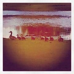Photo taken at Mermaid Lake by Kaitlyn R. on 7/16/2012